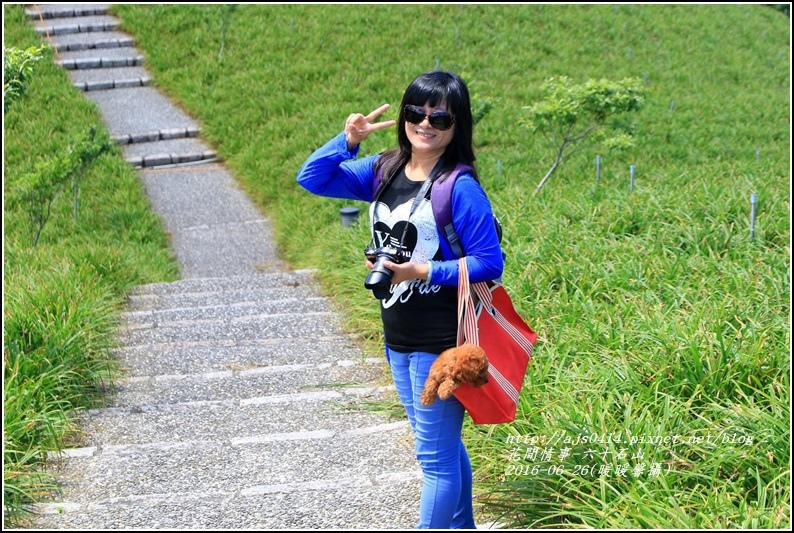 六十石山-2016-06-04.jpg