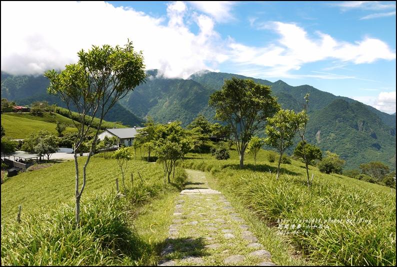 六十石山-2016-06-32.jpg
