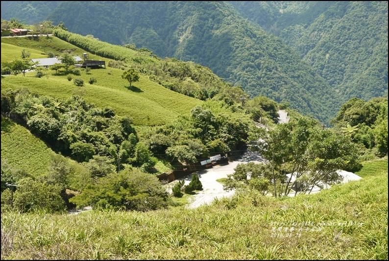 六十石山-2016-06-39.jpg