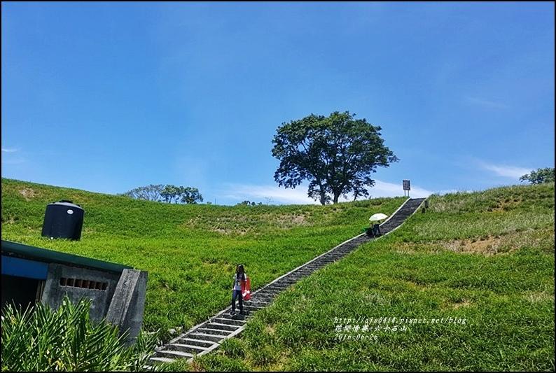六十石山-2016-06-43.jpg