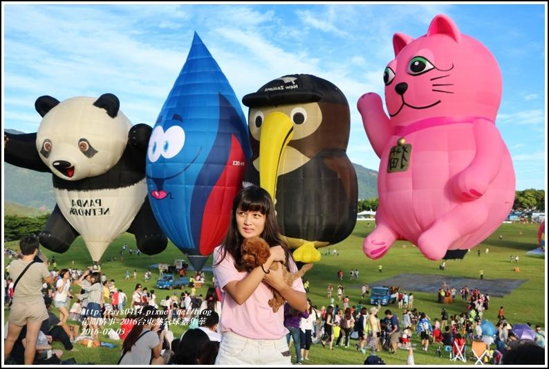 2016台東熱氣球嘉年華10.jpg