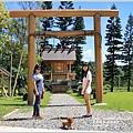 鹿野神社-2016-07-07.jpg