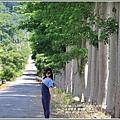 龍田自行車道-2016-07-04.jpg