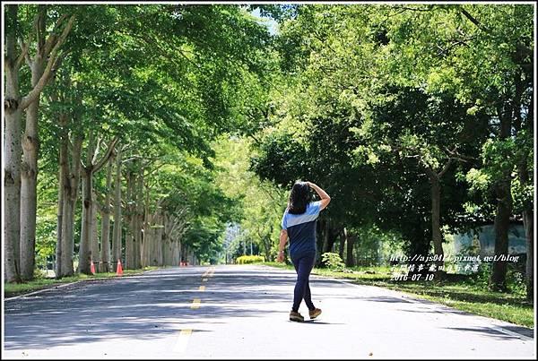 龍田自行車道-2016-07-07.jpg