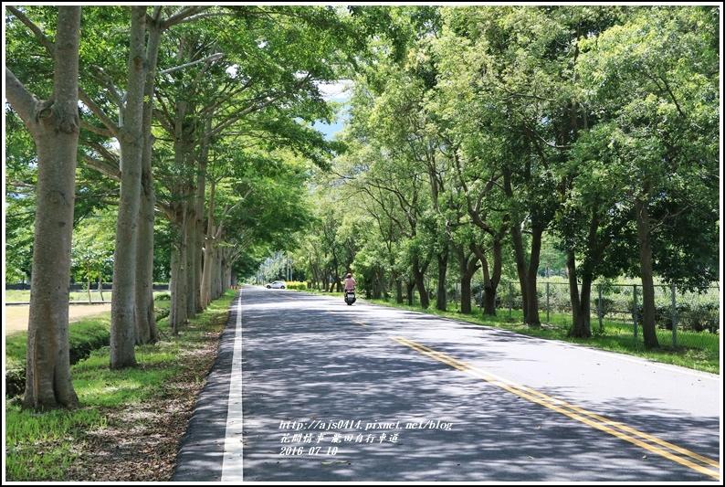 龍田自行車道-2016-07-16.jpg