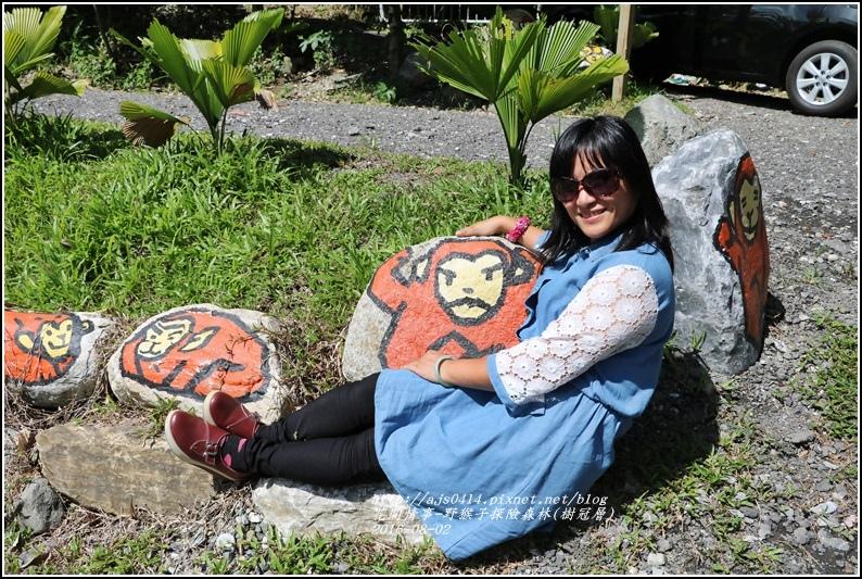 野猴子森林樂園(樹冠層)-2016-08-02.jpg