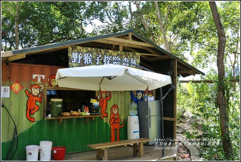 野猴子森林樂園(樹冠層)-2016-08-04.jpg