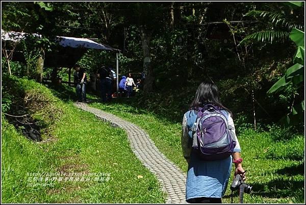 野猴子森林樂園(樹冠層)-2016-08-03.jpg