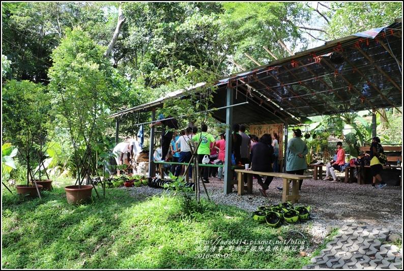 野猴子森林樂園(樹冠層)-2016-08-07.jpg