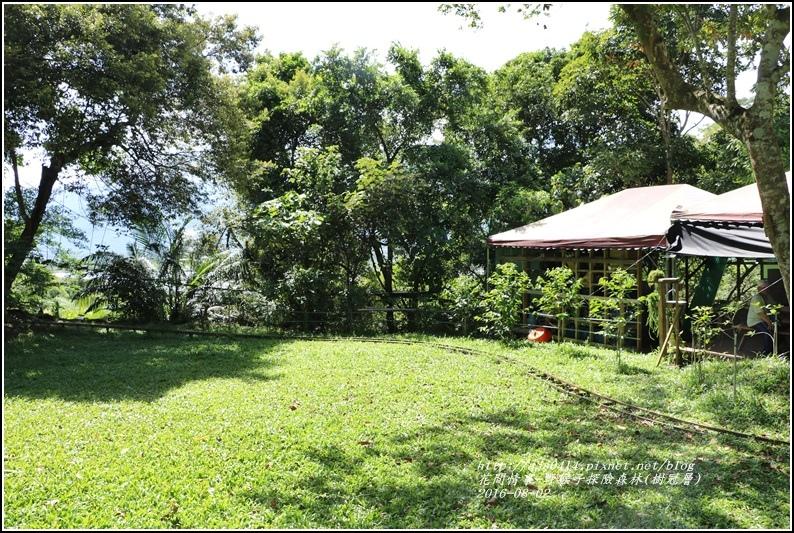 野猴子森林樂園(樹冠層)-2016-08-09.jpg