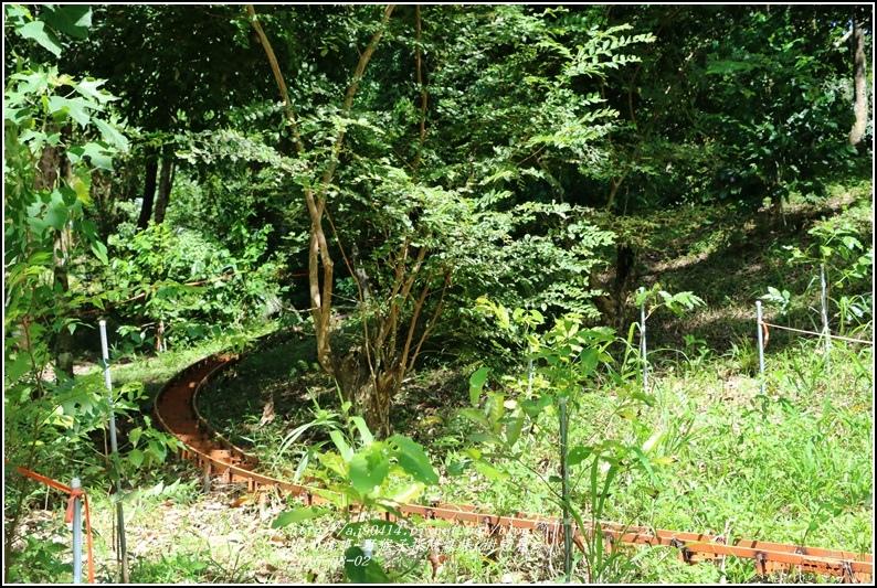 野猴子森林樂園(樹冠層)-2016-08-10.jpg