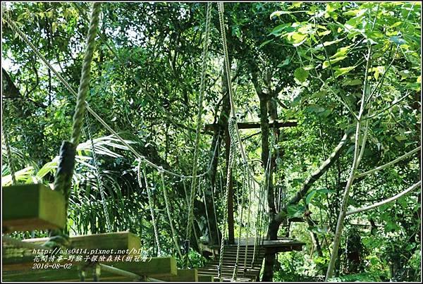 野猴子森林樂園(樹冠層)-2016-08-11.jpg