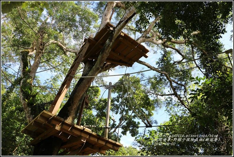 野猴子森林樂園(樹冠層)-2016-08-12.jpg