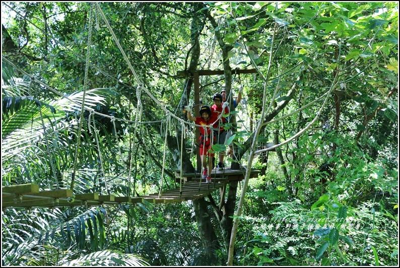野猴子森林樂園(樹冠層)-2016-08-14.jpg