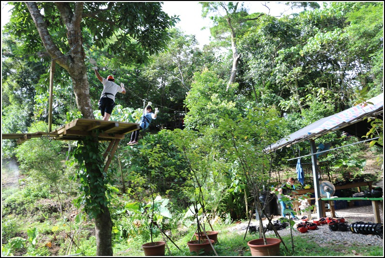 野猴子森林樂園(樹冠層)-2016-08-21.jpg