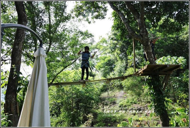 野猴子森林樂園(樹冠層)-2016-08-22.jpg