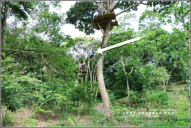 野猴子森林樂園(樹冠層)-2016-08-25.jpg