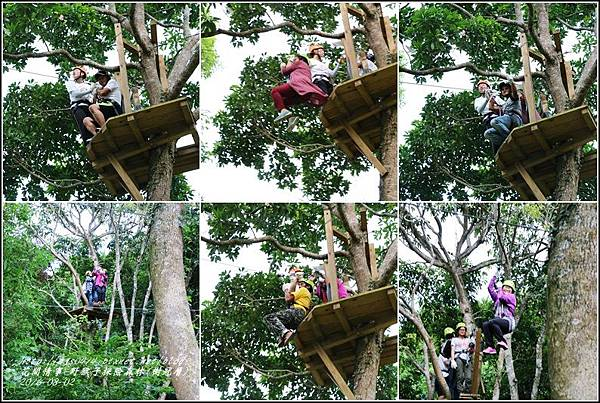 野猴子森林樂園(樹冠層)-2016-08-27.jpg