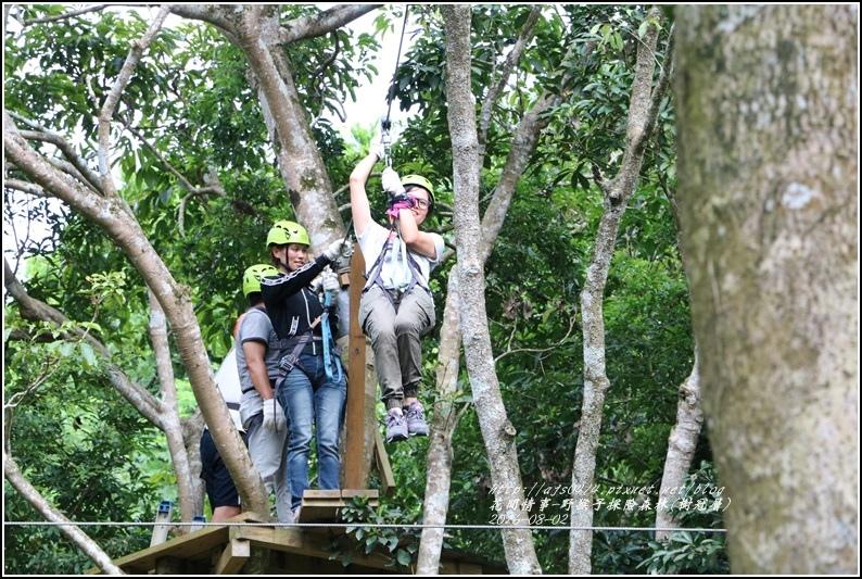 野猴子森林樂園(樹冠層)-2016-08-28.jpg