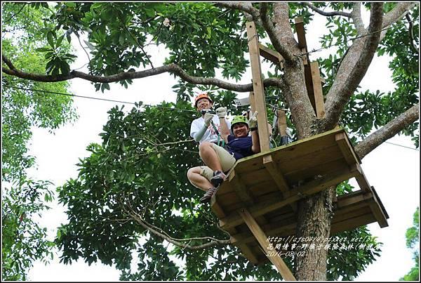 野猴子森林樂園(樹冠層)-2016-08-32.jpg