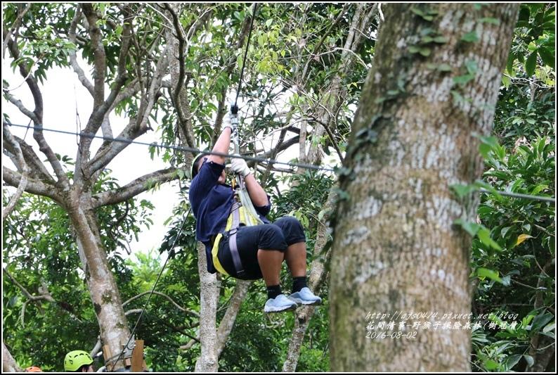 野猴子森林樂園(樹冠層)-2016-08-35.jpg