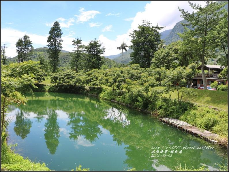 鯉魚潭旁樹屋-2016-08-06.jpg
