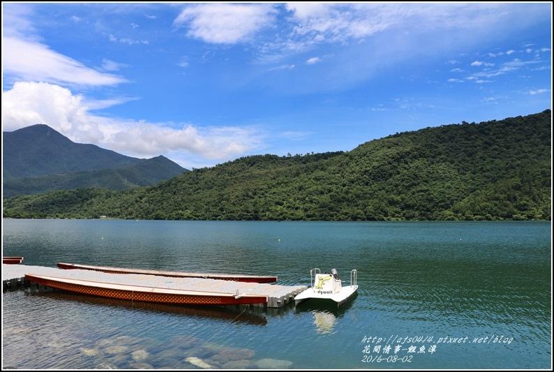 鯉魚潭旁樹屋-2016-08-10.jpg