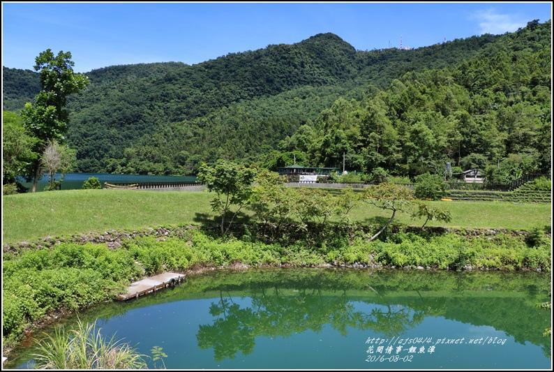 鯉魚潭旁樹屋-2016-08-14.jpg