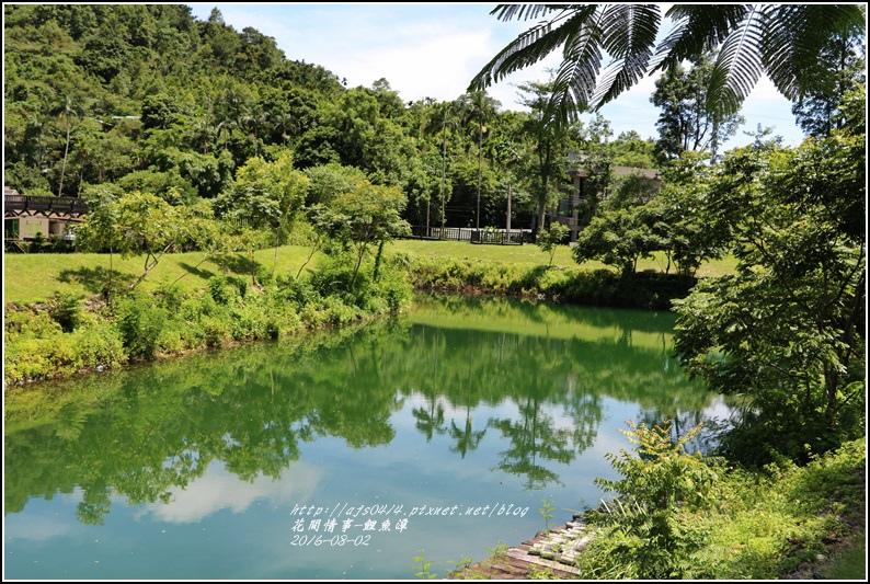 鯉魚潭旁樹屋-2016-08-15.jpg