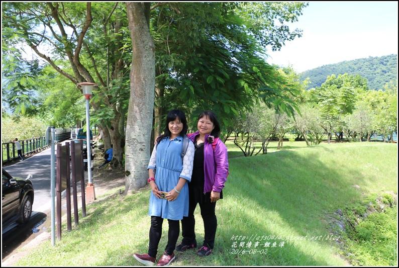 鯉魚潭旁樹屋-2016-08-16.jpg
