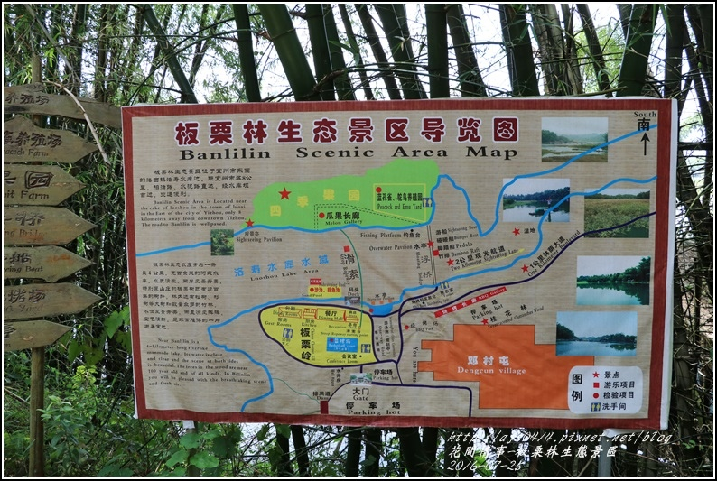 廣西板栗林生態區-2016-07-01.jpg