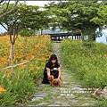 2016-六十石山金針花季-2016-08-08.jpg