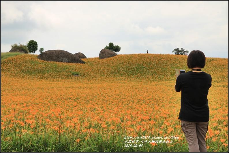 大娜同遊赤柯山-2016-09-18.jpg