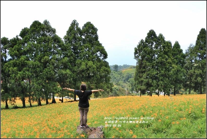 大娜同遊赤柯山-2016-09-21.jpg