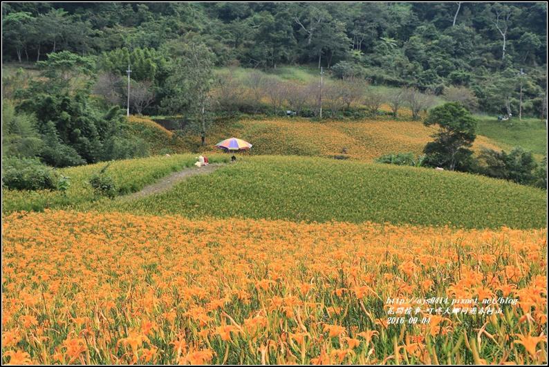 大娜同遊赤柯山-2016-09-30.jpg