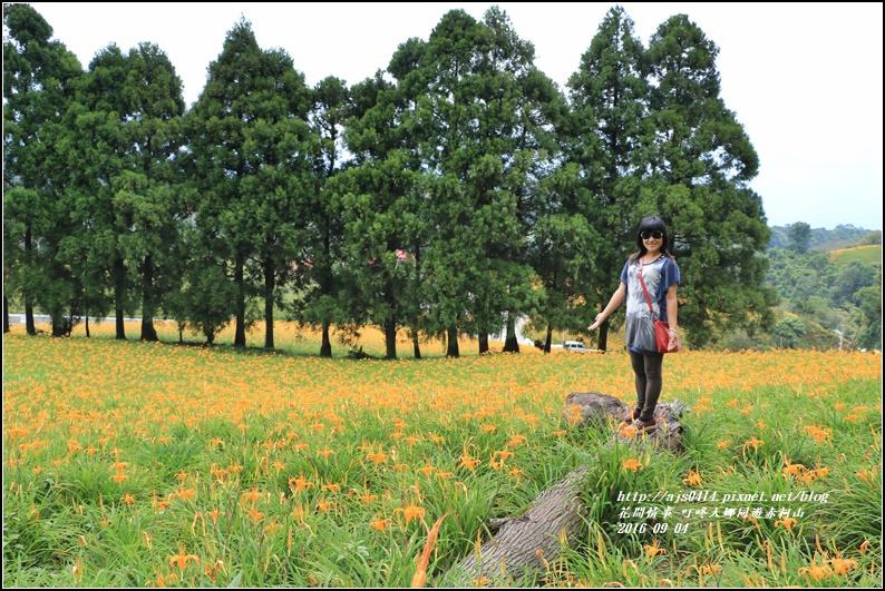 大娜同遊赤柯山-2016-09-42.jpg
