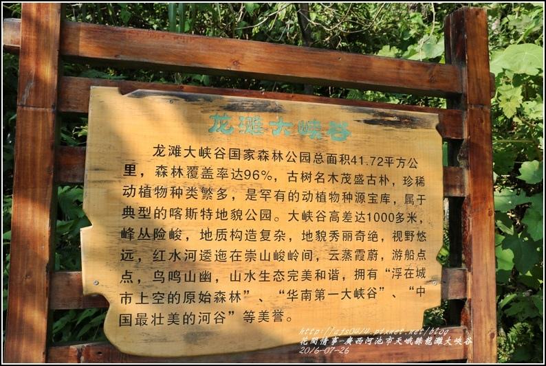 廣西池河市天峨縣龍灘大峽谷-2016-07-15.jpg