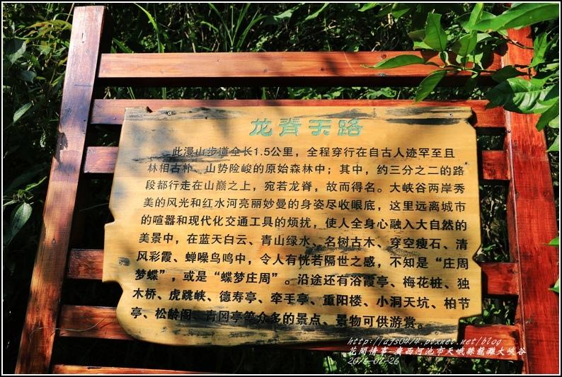 廣西池河市天峨縣龍灘大峽谷-2016-07-21.jpg
