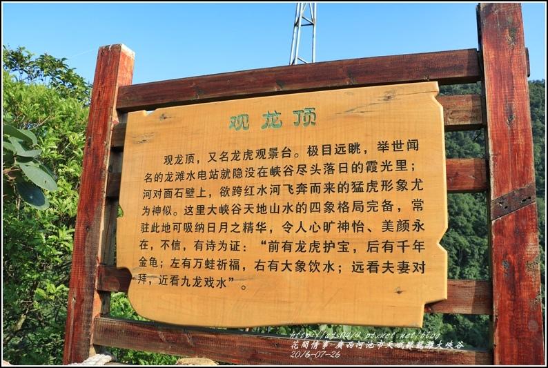廣西池河市天峨縣龍灘大峽谷-2016-07-24.jpg