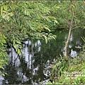拉索埃湧泉生態園區-2016-10-23.jpg