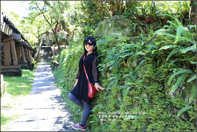 林田山文化園區-2016-10-34.jpg