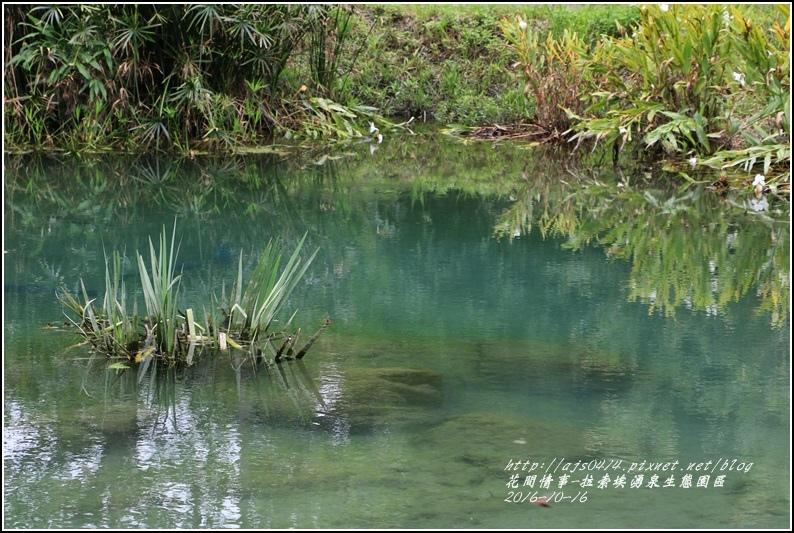 拉索埃湧泉生態園區-2016-10-50.jpg