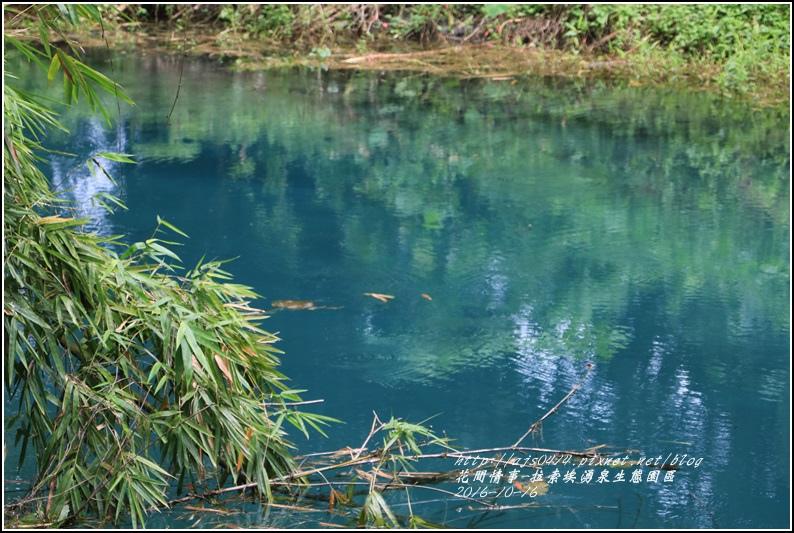 拉索埃湧泉生態園區-2016-10-64.jpg