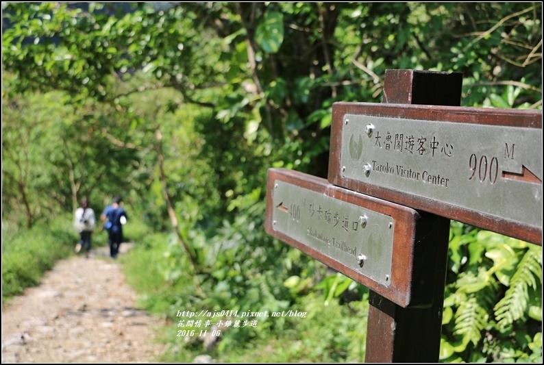 小錐麓步道-2016-11-38.jpg