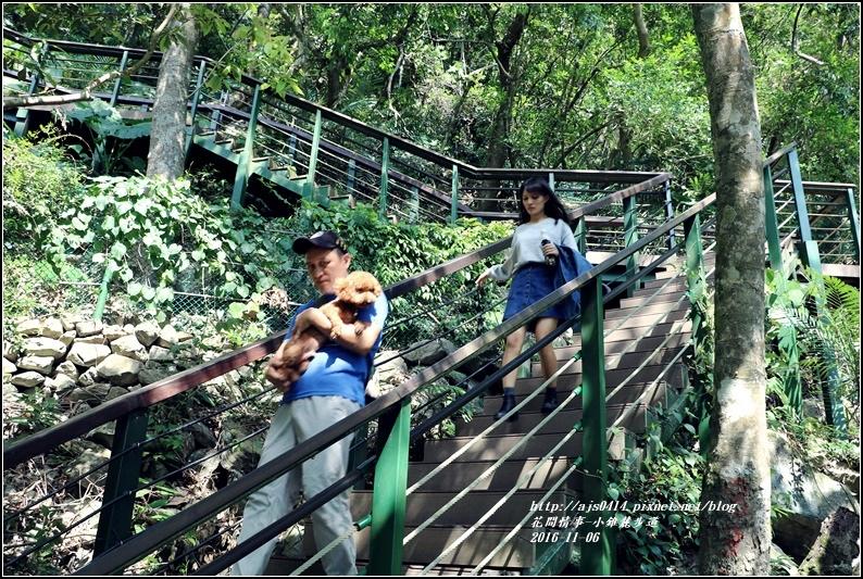 小錐麓步道-2016-11-54.jpg