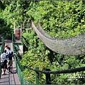 小錐麓步道-2016-11-53.jpg