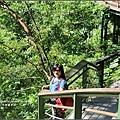 小錐麓步道-2016-11-57.jpg