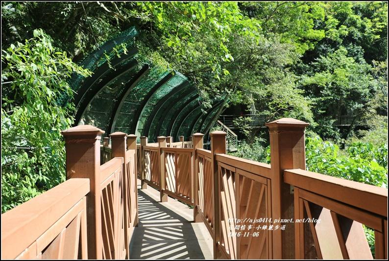 小錐麓步道-2016-11-58.jpg