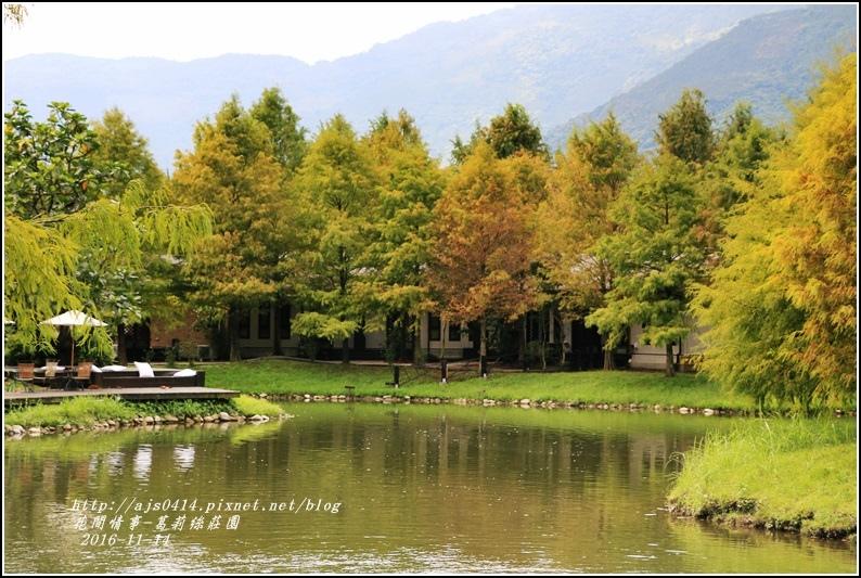 葛莉絲莊園落羽松-2016-11-05.jpg