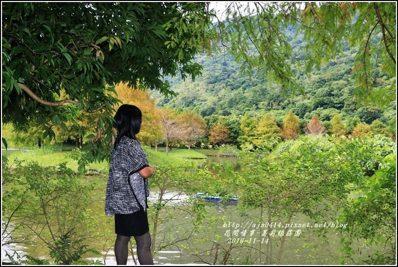 葛莉絲莊園落羽松-2016-11-07.jpg